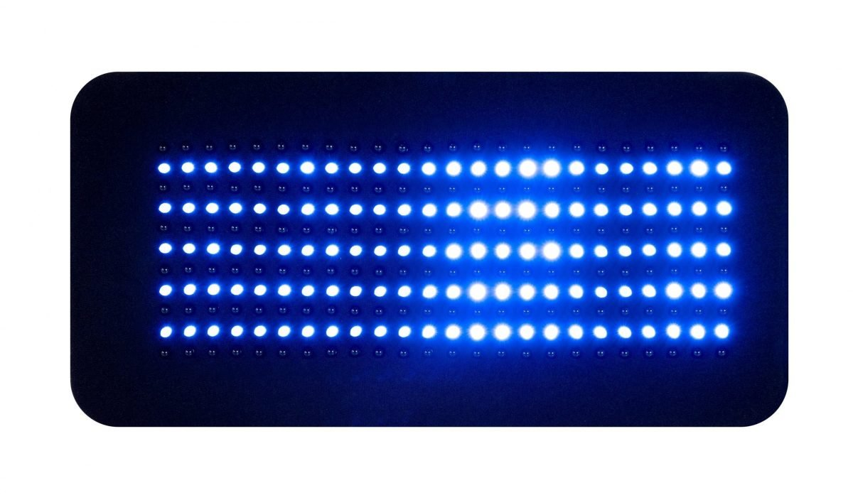 Inlight Therapy Inc LED light therapy pad Body 264 in blue